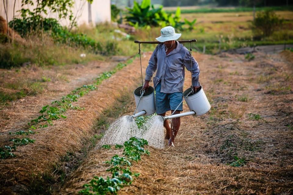 farmer loans online