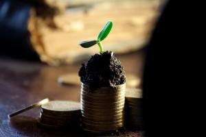 10 Extraordinary Ideas To Make Quick Cash