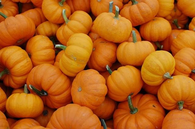 halloween saving tips