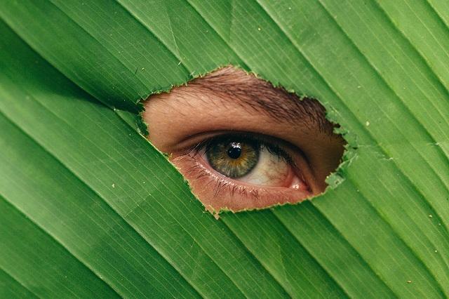 loan for tlc eye surgery