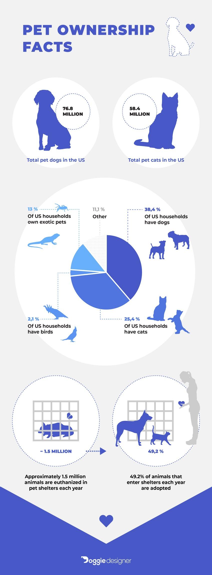 veterinary loans
